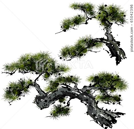 大大小小的松樹 65042396