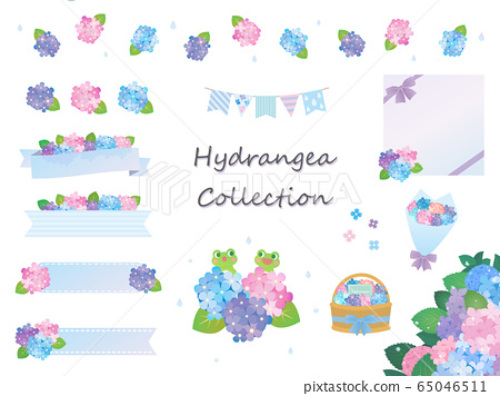 美麗的繡球花材料集合 65046511