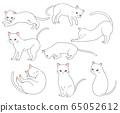 White cat 65052612