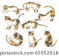 Mikane cat 65052618
