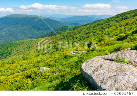 beautiful summer landscape in mountains. green 65061467