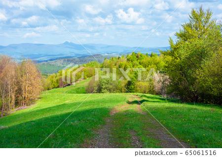beautiful nature mountain scenery. path through 65061516