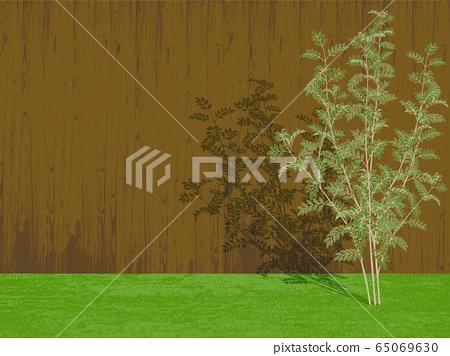 줄무늬 물푸레 나무 울타리 65069630
