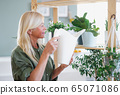 Attractive senior woman watering plants indoors at home. 65071086