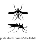Black mosquito sign drinks blood, vector art 65074668