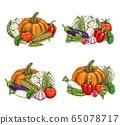 Vegetables sketch, fresh farm food harvest 65078717