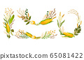 Agricultural Composition with Different Spikelets and Crops Like Corn and Wheatear Vector Set 65081422