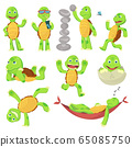 Set of happy young cartoon turtle in different poses. Fanny kid. T-shirt vector logo design 65085750