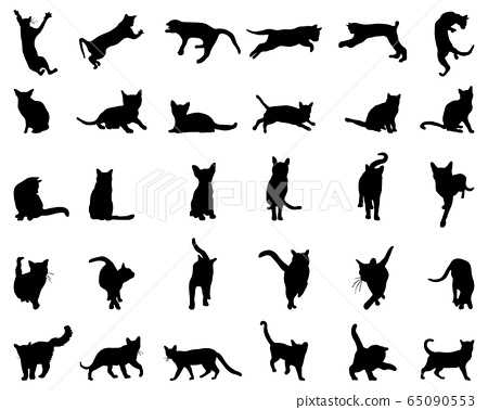 Big set of cats silhouettes on a white background 65090553