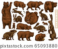 Grizzly bear and hares set. Collection of Rabbits and Brown wild animals in different poses. Forest 65093880