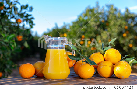Jug and glasses of freshly squeezed orange juice with oranges in an outdoor setting during summer 65097424