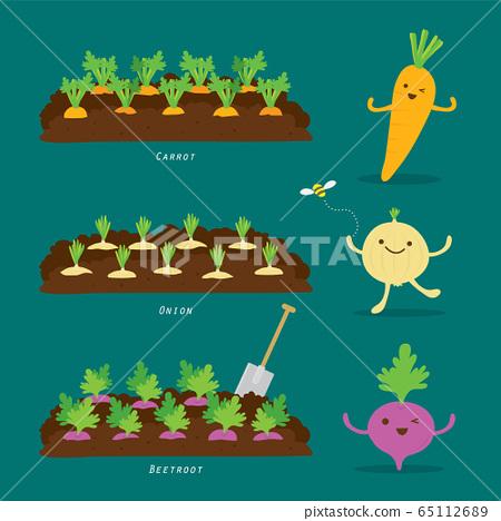 Set of Vegetable garden. Organic and healthy food Cartoon Vector illustration. 65112689