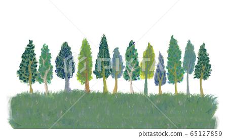 樹木的地平線 65127859