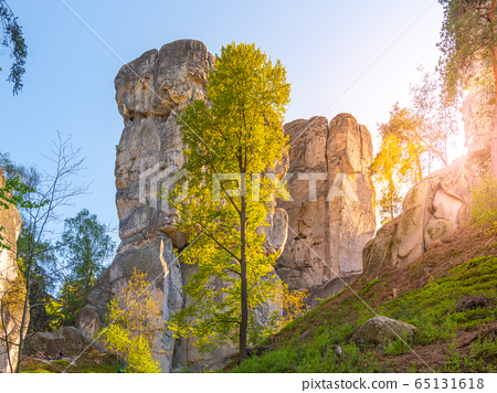 Monumental sandstone rock formation in the miidle of spring forest of Bohemian Paradise, Czech: Cesky raj, Czech Republic 65131618
