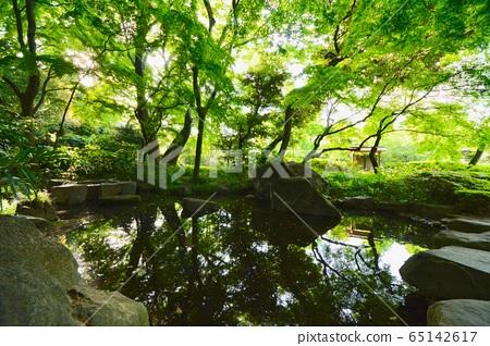 도쿄도 훌륭한 군주의 폭포 공원 65142617