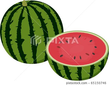 Watermelon one ball and half cut vector illustration 65150746