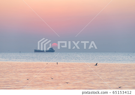 Landscape view  in sunset with seagulls and 65153412