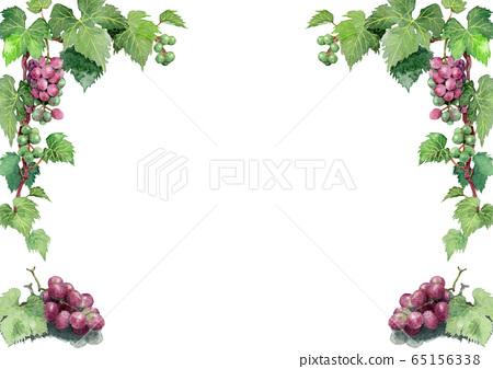 葡萄的裝飾模板畫水彩 65156338
