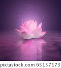 lotus 65157173