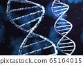 유전자, DNA, 3D 렌더링 65164015