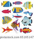 Colorful Tropical Aquarium Fishes Set in Flat 65165147
