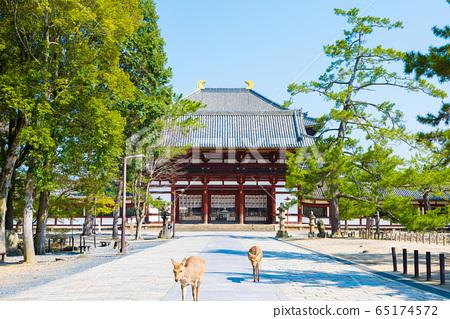 도다이지 중문와 경내 풍경 사슴 (나라현 나라시) 65174572
