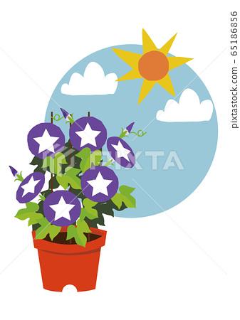 牽牛花的圖像例證。夏天花的圖像。 65186856
