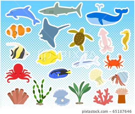 各種海洋生物設置/矢量 65187646