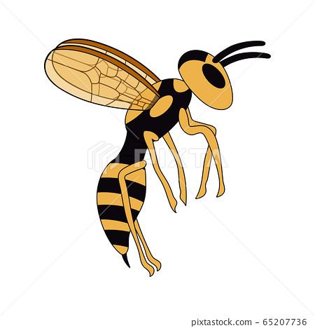 cartoon flying wasp. white background isolated vector illustration 65207736