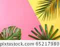 Different palm leaves on two color background, 65217980