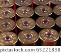 Set of shabby shotgun shells 65221838
