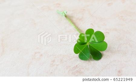 Four leaf clover 65221949