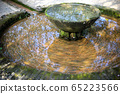 View of old Fountain basin with green algae 65223566