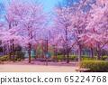 벚꽃 65224768