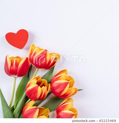 鬱金香花束母親節鬱金香花束母親節 65225469