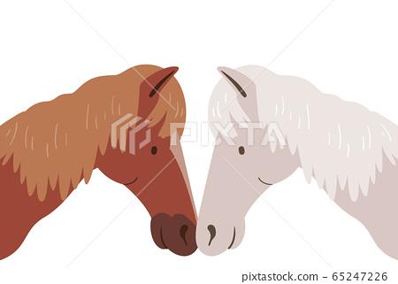 Horse Rub Nose Sign Affection Illustration 65247226