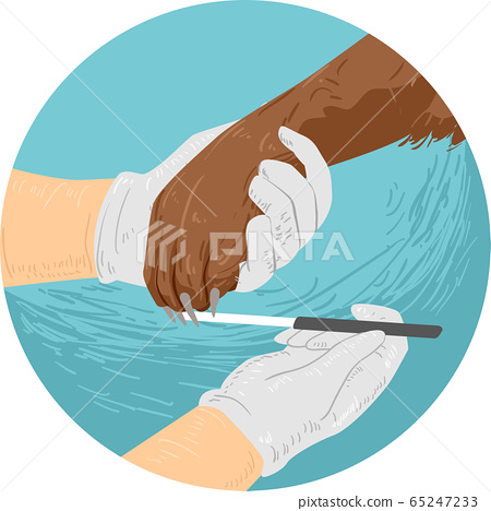 Dog Hand Nail File Illustration 65247233