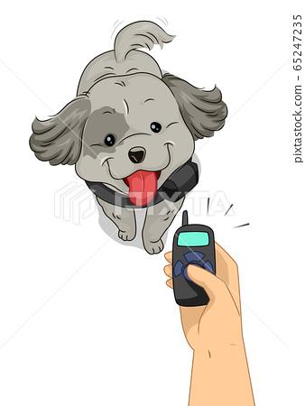 Dog Hand Electronic Collar Training Illustration 65247235