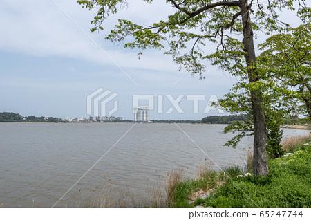 Gyeongpoho lake trails 65247744