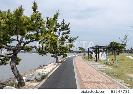 Gyeongpoho lake trails 65247751