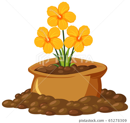 Yellow flowers in brown bag on white background 65278309