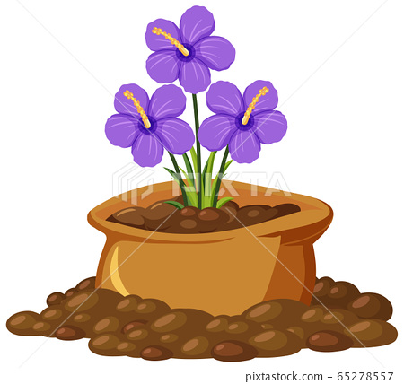 Purple flowers in brown bag on white background 65278557