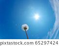 Dandelion fluff against the blue sky 65297424