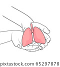 Human hands holding lung. world tuberculosis tb day.  65297878