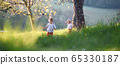 Small children boy and girl playing outdoors in spring nature. 65330187