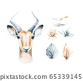 Africa watercolor savanna antelope, animal illustration. African Safari wild life cute exotic animals face portrait character. Isolated on white poster design 65339145