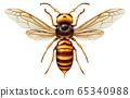 Murder Hornet 65340988