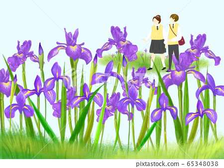 Beautiful spring day with colorful flowers illustration 007 65348038