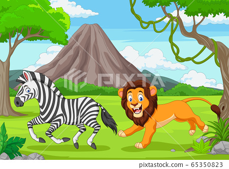 The lion is chasing a zebra in an African savanna 65350823