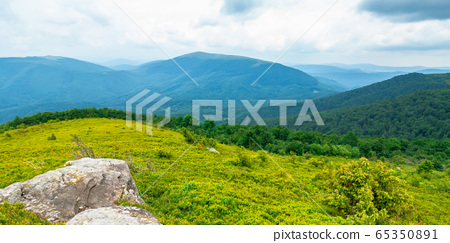 beautiful summer landscape in mountains. green 65350891